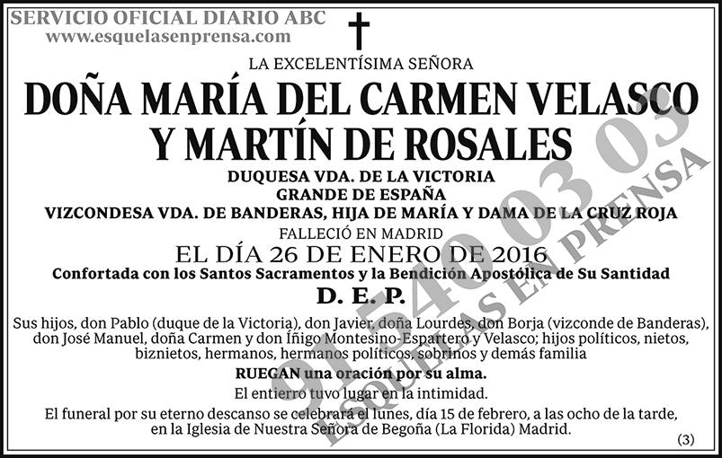 María del Carmen Velasco y Martín de Rosales